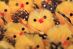 Little Easter chicks Royalty Free Stock Image
