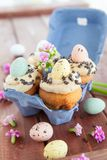 Little easter cupcakes Stock Photography