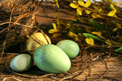 Little Easter eggs Stock Photography