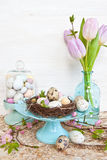 Little easter nest with quail eggs Stock Images