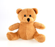 Little eddy bear. Little teddy bear on white background Royalty Free Stock Images