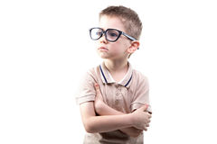 Little educated boy in glasses Royalty Free Stock Photo