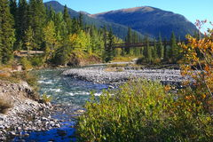 Little Elbow River; footbridge Stock Photos