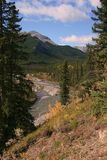 Little Elbow River Valley, Alberta, Canada Royalty Free Stock Photo