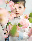 Little elegant boy holding a flower Stock Photo
