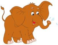 Little elephant Stock Image
