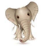 Little elephant. Isolated on white royalty free illustration