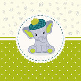 Little elephant baby Stock Images