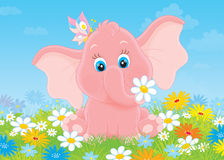 Little elephant with flowers Stock Image