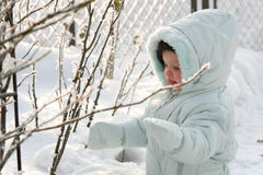 Little Eskimo. A baby standing near the rose steams Royalty Free Stock Photography