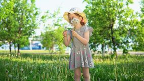 A little European girl blows fluffy seeds from a white dandelion. Little cute girl dressed in a gray dress and a hat blows fluffy seeds from a dandelion stock video footage