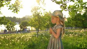 A little European girl blows fluffy seeds from a white dandelion. Little cute girl dressed in a gray dress and a hat blows fluffy seeds from a dandelion. Side stock footage