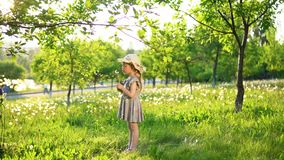 A little European girl blows fluffy seeds from a white dandelion. Little cute girl dressed in a gray dress and a hat blows fluffy seeds from a dandelion. Side stock video footage