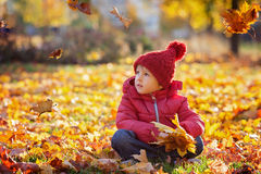 Little excited boy playing with leaves in the park Royalty Free Stock Photography