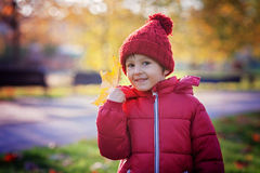 Little excited boy playing with leaves in the park Royalty Free Stock Photo