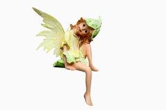 Little fairy. Litte fairy as an isolated image Stock Images