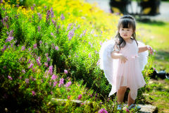 Little fairy in flower field Stock Photos