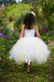 Little fairy in a tutu. Royalty Free Stock Images