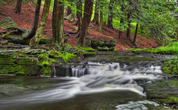 Free Little Falls Stock Image - 923791