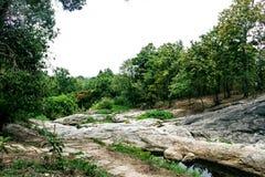 Little Falls nella foresta fotografie stock