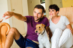 Little family and dog. Man and women in they house playing with the dog Stock Images