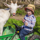 Little farm boy. Cute farm kid and a goat Stock Image