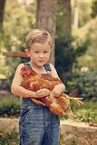 Little farm boy holding red chicken. Boy eating sandwich fishing bridge Royalty Free Stock Photo