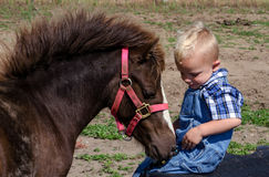 Little farm boy with pony Stock Photo