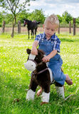 Little farm boy on toy horse Stock Image