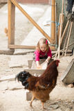 Little farm girl Royalty Free Stock Photography