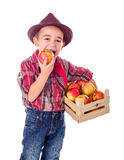 Little farmer boy tasting good apple Royalty Free Stock Images