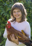 Little farmer is holding a rooster Stock Image