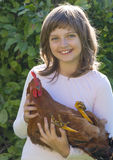 Little farmer is holding a rooster Royalty Free Stock Photography