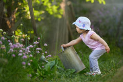 Little farmer at work in the garden. Watering onions stock images