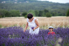 Little fashionable boy having fun in lavender field Stock Image