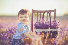 Little fashionable boy having fun in lavender summer field. Royalty Free Stock Images