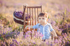 Little fashionable boy having fun in lavender summer field. Stock Images