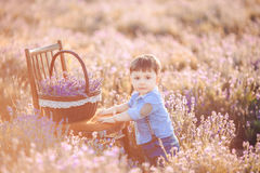 Little fashionable boy having fun in lavender summer field. Stock Photo