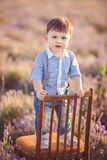 Little fashionable boy having fun in lavender summer field. Royalty Free Stock Photo