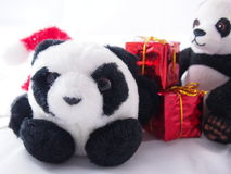 Little fat panda dolls, dark black rims of eyes with Christmas day concept Stock Photos