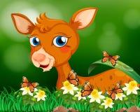 Little fawn in flower garden Royalty Free Stock Photos