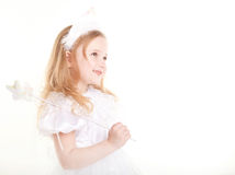 Little fay Royalty Free Stock Images