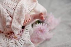 Little feet Stock Images