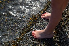 Little Feet. Standing on the shore Stock Images