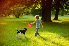 The little fellow trains a dog in park. Stock Photos