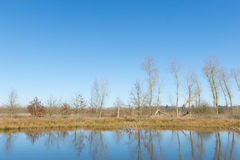 Little fen in Holland Royalty Free Stock Photo