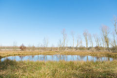Little fen in Holland Stock Images