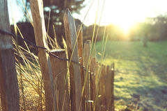 A little fence in the evening sun. Stock Photos