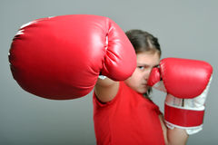 Little Fighter Royalty Free Stock Image