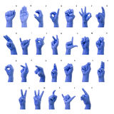Little Finger Spelling the Alphabet in American Sign Language (A Royalty Free Stock Images